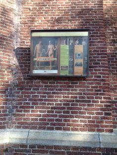 Lof & Lust in de Laurens(kerk)