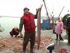 Pescador chinês fisga enguia de quase 2 metros - http://anoticiadodia.com/pescador-chines-fisga-enguia-de-quase-2-metros/