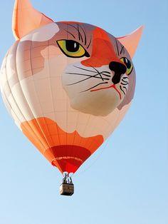 #Cat Hot Air Balloon      http://wp.me/s291tj-tripmama