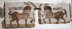 Mosaique du musee national du Bardo _ Tunis