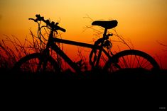 Some tips to consider when photographing a silhouette along with amazing silhouette photos to inspire you Freeride Mountain Bike, Moutain Bike, Mountain Biking, Bike Silhouette, E Mtb, Bike Photography, Bike Poster, Ocean Wallpaper, Bike Pedals