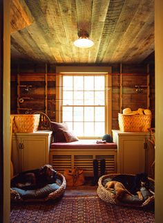 Content in a Cottage  (where it came from!) three dogs in their beds at my house!  (this is not my house)  but;  this is my idea of heaven.....the old rug....the ceiling......the beds......and most of all;  the dogs.  Look at them!  Life doesn't get much better! Divine!!!