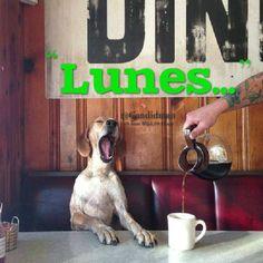#Lunes...