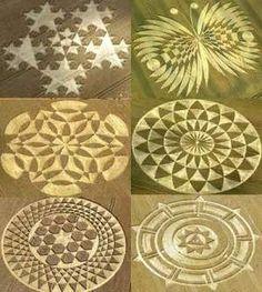 See Crop Circles in real life.