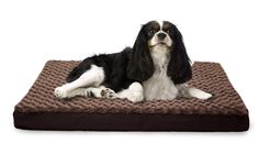 Amazon.com : Furhaven Orthopedic Mattress Pet Bed, Large, Chocolate, for Dogs and Cats : Pet Supplies