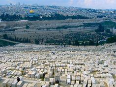 Jerusalem | Harmony & Synergy
