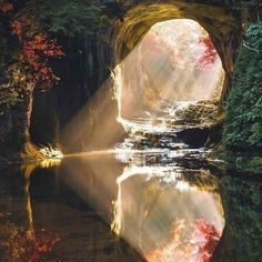 hat do you think about this photo?🌺 Magical Place in Chiba, Japan 🌸 Photo B Photo Japon, Japan Photo, Japan Picture, Chiba Japan, Tokyo Japan, Water Reflections, Fantasy Landscape, Fall Photos, Landscape Photographers
