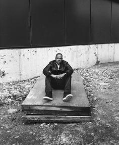 Cass Bird - Jay Z