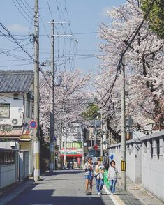 A sunny day in spring / Japan Japan Countryside, Japan Beach, Japan Street, Go To Japan, Beach Aesthetic, Kyushu, Landscape Photography, Beautiful Places, Scenery