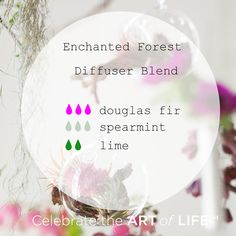 Enchanted Forest Diffuser Blend Essential oil diffuser blend with Douglas Fir, Spearmint and Lime. Enchanted Forest Diffuser Blend with dōTERRA essential oils. Essential Oil Chart, Coconut Essential Oil, Essential Oil Scents, Essential Oil Perfume, Essential Oil Diffuser Blends, Essential Oil Uses, Perfume Oils, Doterra Diffuser, Coconut Oil Pulling