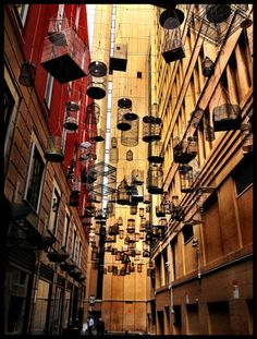 "Sydney, Australia: ""Forgotten Songs"" in Angel Place is part of the Laneways: By George! Hidden Networks project. Singing birdcages hanging overhead tweeting recorded songs from Sydney birds now lost to the inner city area. ""The project is all about species loss. The speakers play back different sounds - daytime birds during the day and night time birds at night."" Artist, Michael Thomas Hill"