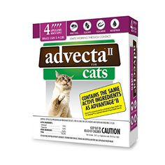Advecta II Flea Treatment for Cats 5-9 lbs, 4 Month Supply  Effectively breaks the flea life-cycle by killing all life stages of fleas: adults, eggs and larvae  Contains the same active ingredients as Bayer Advantage II for Cats (pyriproxyfen & imidacloprid)  Kills fleas within 12 hours of drops application, and prevents reinfestations for up to 4 months  Fragrance-free treatment that is convenient, safe, and easy to apply  Waterproof. Flea medication remains effective & provides prote...