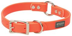Terrain D.O.G. Brahma Webb Hunting Dog Collar, 3/4' by 19', Blaze Orange ** Continue to the product at the image link. (This is an affiliate link and I receive a commission for the sales)