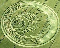 crop circle - Cerca con Google