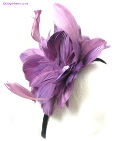 Purple fascinator!