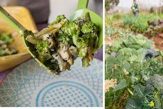 De la huerta a la mesa: brécol con salsa de tahini dulce - Ottolenghi´s broccoli & sweet tahini Tahini, Ottolenghi, Sprouts, Broccoli, Favorite Recipes, Vegetables, Sweet, Flower, Fall Vegetables