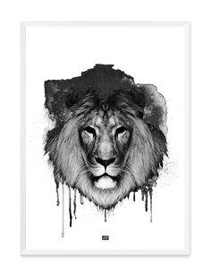 KING III
