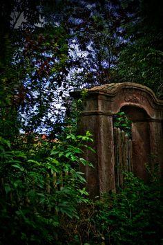 Garden gate HDR