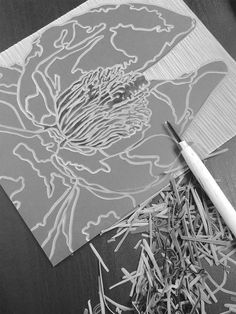 Set Forth Studio – Magnolia Linocut Print in Progress // Bloom // This art print will look gorgeous on your wall, or makes a great gift! Using traditional linocut techniques, each original print is individually drawn, carved, inked, hand-pulled and subtly unique! The shop is chock-a-block with greeting cards & paper goods to reignite your penchant for snail mail, and graphic artwork to fill that vacant spot in your reading nook.