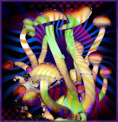 #psychedelic #art