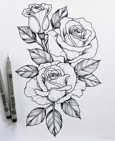 45 Beautiful Flower Drawings and Realistic Color Pencil Drawings Drawing Tips rose drawing Rose Drawing Tattoo, Flower Art Drawing, Pencil Drawings Of Flowers, Flower Tattoo Drawings, Flower Sketches, Floral Drawing, Flower Tattoo Designs, Art Drawings Sketches, Easy Drawings