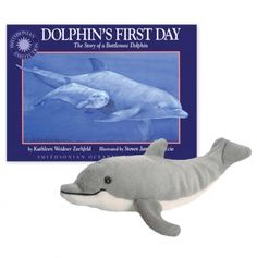 Dolphin's First Day