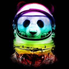 1000 images about pandas on pinterest cops the rainbow and rodeo