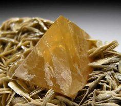 Scheelite, CaWO4, on Muscovite, Mt Xuebaoding, Ping Wu, Sichuan Prov., China. Size 10 x 4 x 3 cm