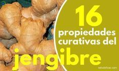 16 propiedades curativas del jengibre que no conocias