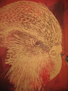 Kakapo Owl, Bird, Animals, Animales, Animaux, Owls, Birds, Animal, Animais