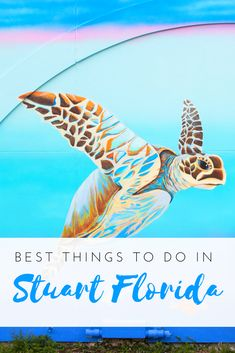 Martin County Florida Travel Guide - all the best things to do in and around Stuart | #Florida #usa