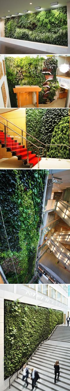 Living walls - 4th pic at Drexel University! :)