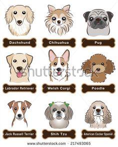 Poodle Stock Illustrations & Cartoons | Shutterstock