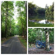 Pics along the road around the American and French encampments - Yorktown, VA