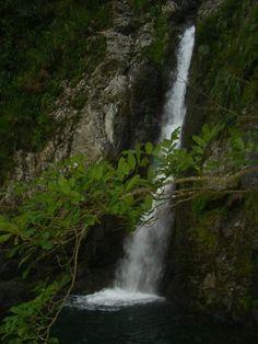 Cascada La Escalera Bosque Tres Picachos | puerto rico ...