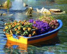 Love these floating boat gardens! Taken at Busch Gardens in Tampa, FL.