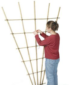 Build a Bamboo Trellis: step by step instructions on making a vertical garden structure out of sustainable bamboo poles. They last well, are lightweight, portable & low cost. Even better if you grow bamboo. Bamboo Trellis, Bamboo Poles, Diy Trellis, Garden Trellis, Trellis Ideas, Privacy Trellis, Plant Trellis, Clematis Trellis, Garden Beds