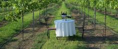 Wakefield Country Inn & Winery | TravelOK.com - Oklahoma's Official Travel & Tourism Site