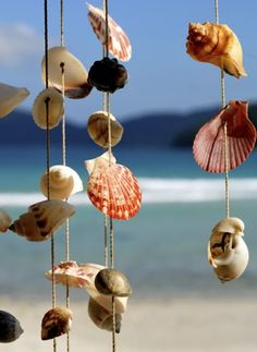 Love collecting shells on the beach? Show off your summer seashells by patiently poking a hole through each with a needle then string them and hang them from a tree, window or in the bathroom!