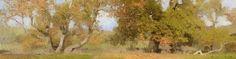 Ann Lofquist | Sycamores, San Simeon Creek I