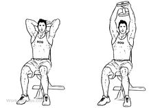 Seated Tricep Press / Overhead Extension   Illustrated Exercise guide - WorkoutLabs
