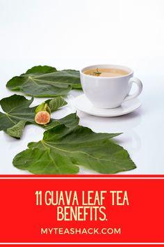 Guava Leaf Tea, Guava Leaves, Guava Benefits, Tea Benefits, Tea For Cough, Best Tea Brands, Iced Tea Recipes, Herbal Teas, My Tea