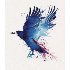 Bloody Crow Canvas Art - Robert Farkas (24 x 24)