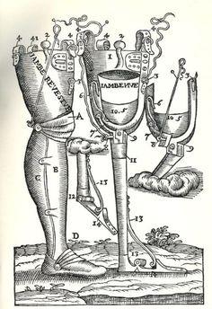 Prosthetic Leg, Opera Chirurgica, Amrbose Paré,1594