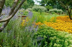 Stan Hywet's Three-Acre Great Garden ~ Part 1