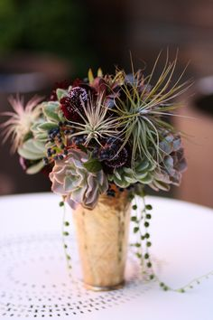 """""""...several different echeveria, some gorgeous tillandsias, poppy pods, an amazing dark scabiosa, silvery leucadendron, and those ethereal blue viburnum berries, with a few dangling strands of senecio 'string of pearls.'"""" (The Cutting Garden - Flora Grubb Gardens)"""