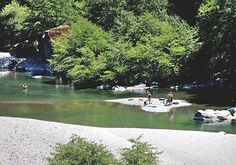 101 things to do in humboldt - richardson grove state park