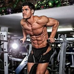 What's your favourite exercise for the triceps? #WeightedDips https://www.musclesaurus.com/