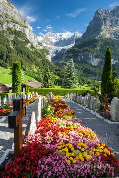 The Jungfrau Region offers spectacular scenery to bewitch the eye. The white peaks of three towering mountains-the Jungfrau, Monch, and Eiger-contrast with the green valleys and meadows in this Alpine wonderland. Places Around The World, Oh The Places You'll Go, Places To Travel, Places To Visit, Beautiful World, Beautiful Places, Beautiful Pictures, Beautiful Gorgeous, Zermatt