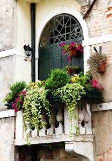 ~ Window Box for a Balcony ~ - fungardenz Balcony Flowers, Balcony Plants, Balcony Window, Window Planters, Balcony Gardening, Flower Gardening, Small Balcony Decor, Balcony Design, Balcony Ideas